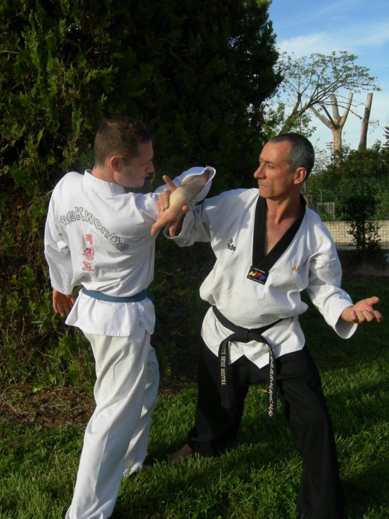taekwondo defense