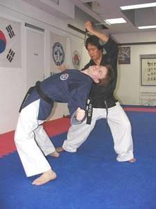 taekwondo hapkido